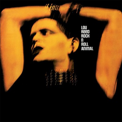 Lou Reed --- Rock 'n Roll...