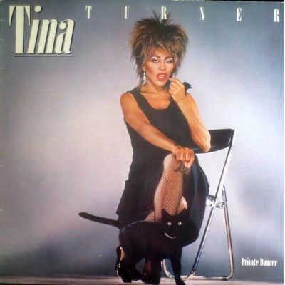 Tina Turner --- Private Dancer