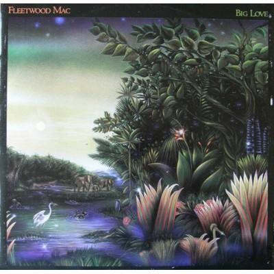 """12"""" Fleetwood Mac --- Big Love"""